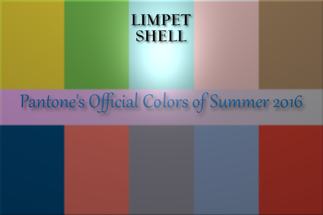 limpet-shell