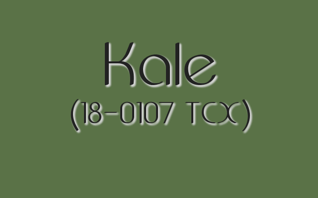 Pantone Spring 2017 color trends: Kale is a dark, leafy green loved by many.
