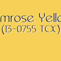 Pantone Spring 2017 Color Trends: Niagara, Primrose Yellow [Part 1 of 5]