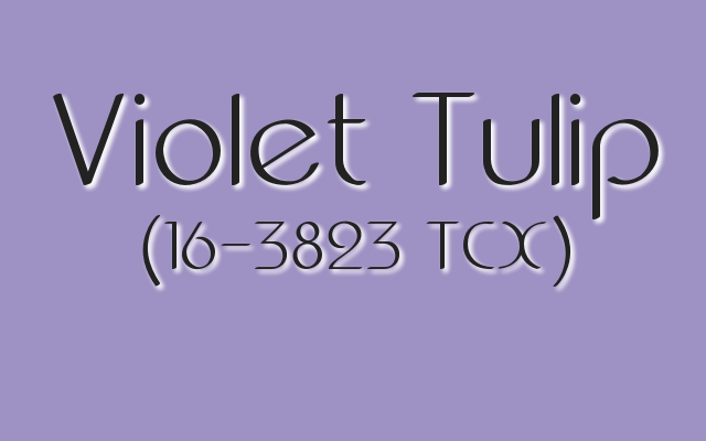 Pantone Violet Tulip. 2017 Mother's Day Colors.