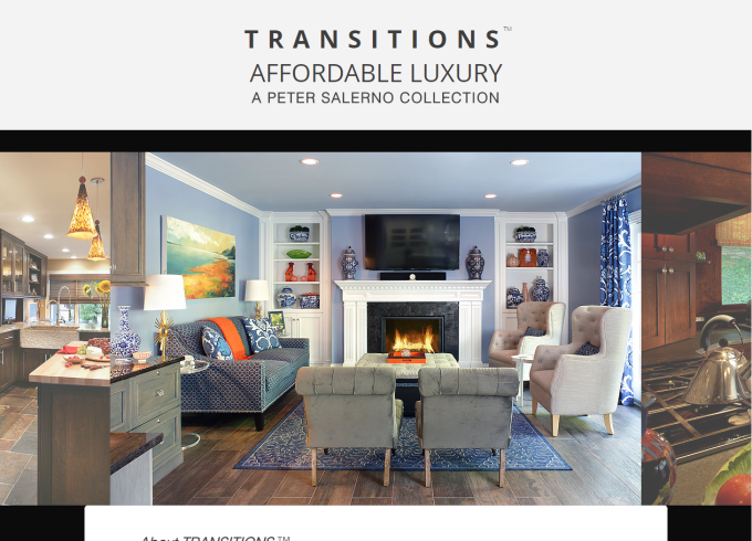 From PeterSalernoInc.com - the Transitions page. Clean, simple and effective.
