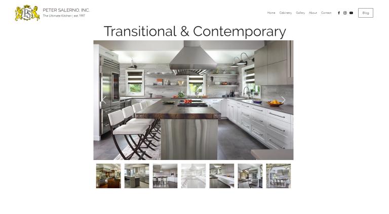 Peter Salerno Inc. new website design 2018
