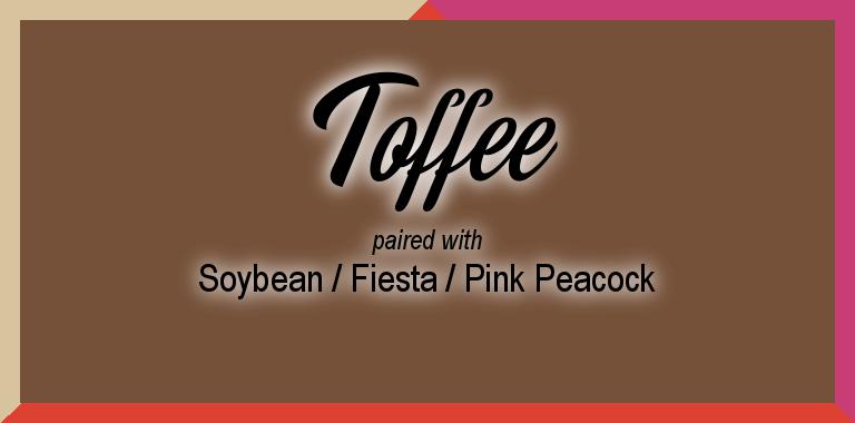 Pantone Spring 2019 Color Palette: Toffee