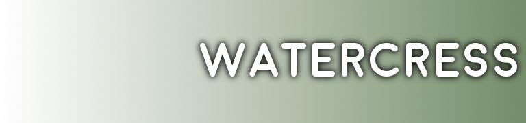 PANTONE Watercress