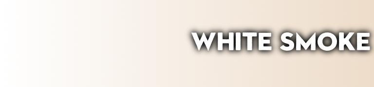 PANTONE white color White Smoke