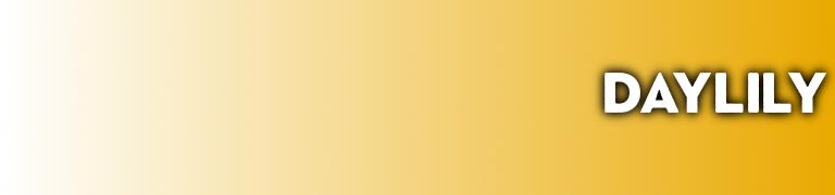 Pantone 2020 Daylily