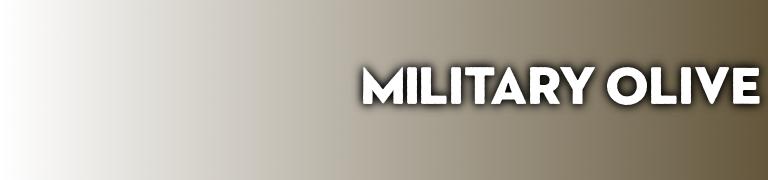 Pantone 2020 color kitchen design Military Olive